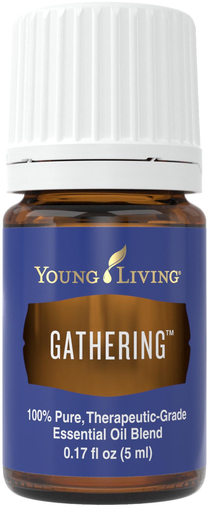 gathering_5ml_silo_us_2016_24527183245_o