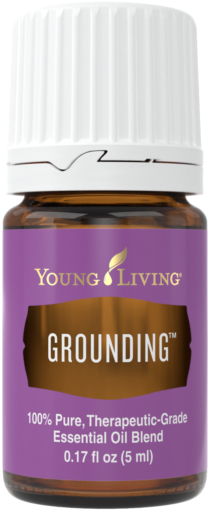 grounding_5ml_silo_us_2016_23899004654_o